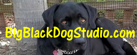 BigBlackDogStudio2