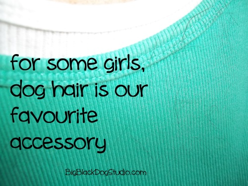 dog hair is an accessory