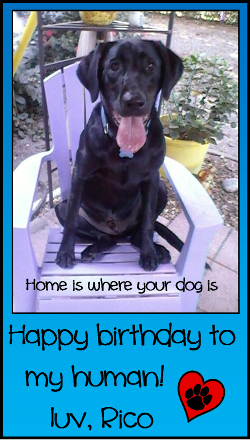 Rico - Greg birthday card 10-18-13
