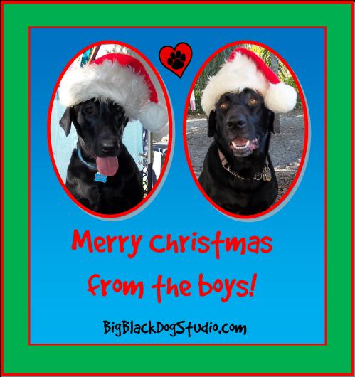 12-25-13 Christmas card