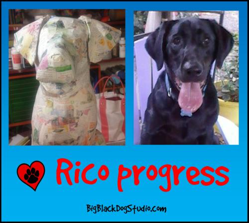 Rico progress1