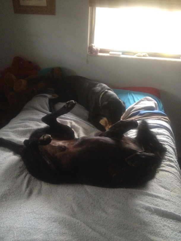 Rollovers on the bed