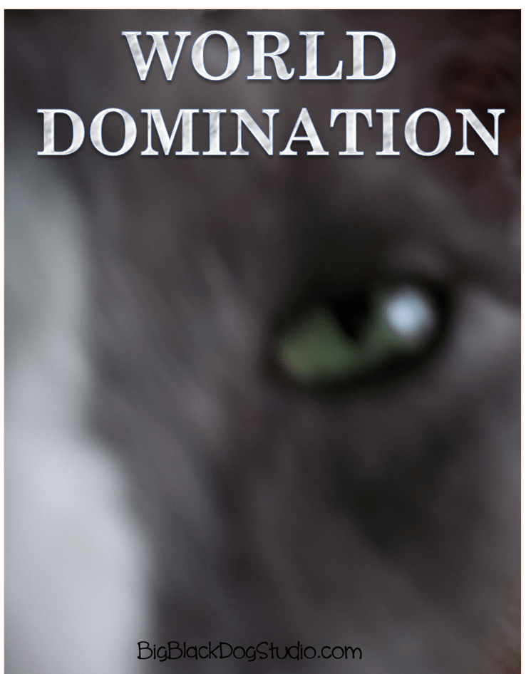 My cat Phoofie's 2019 goal: world domination. Isn't that just like a cat? #Phoofie #catslife #worlddomination #catnipdreams #nosuchthingascatshaming